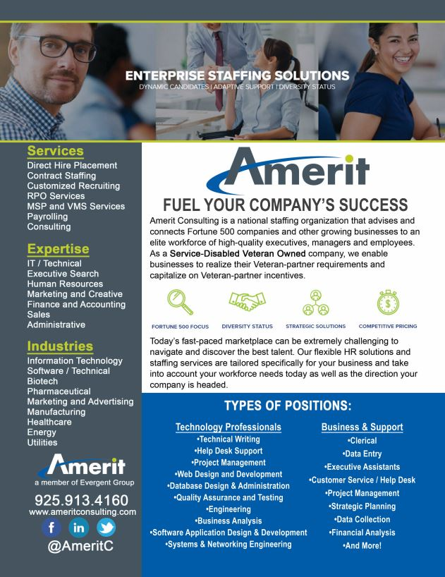 Amerit Consulting Company Information